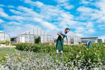 Ausbilder/in für Garten- und Landschaftsbau in Oschersleben