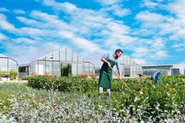 Garten- und Landschaftsbau (Weiterbildung)