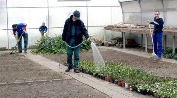 Qualifizierung Haus- und Grundstücksservice mit Schwerpunkt Landschaftspflege