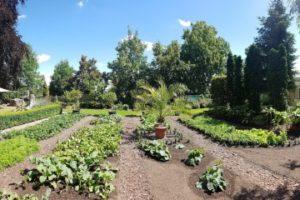 Garten- und Landschaftsbau in Wernigerode