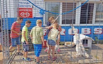 Sommerferien in den Seelander Jugendclubs