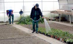 Berufsorientierung im Garten- und Landschaftsbau in der JVA Volkstedt
