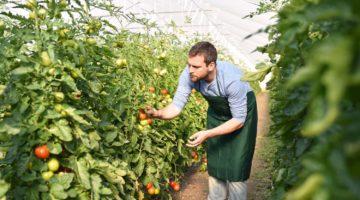 Grünbund – Ausbildungsverbund in Grünen Berufen
